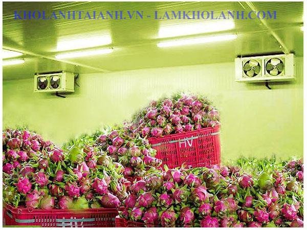 http://lamkholanh.com/images/kholanhcongnghiep/Hoa%20qua/HN/hanoikho-bao-quan-trai-cay.jpg