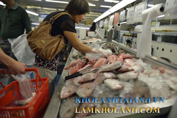 http://lamkholanh.com/images/kholanhcongnghiep/Thuy%20san/Sieu%20thi/Kho-lanh-sieu-thi-1.jpg